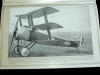 8-hn-ac-wingnut-wings-sopwith-triplane-1-32