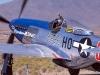 1-set-76-mustang-p-51d-north-american