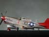4-sg-ac-p51d-mustang-by-adam-brown