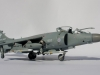 1-sg-sea-harrier-fa2