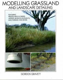 1 BR Ar Wild Swan Pub Modelling Grassland
