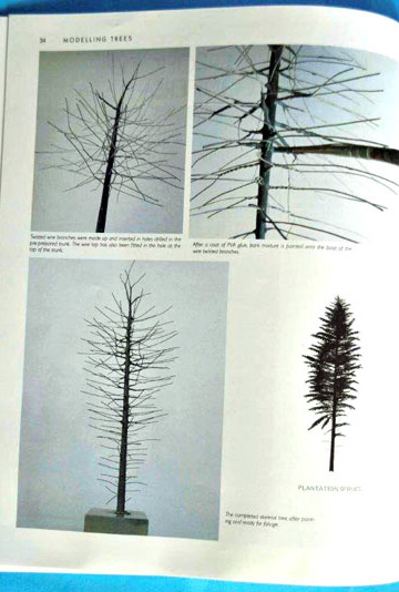 2-BR-Ar-Wild-Swan-Pub-Modelling-Trees-Part-2