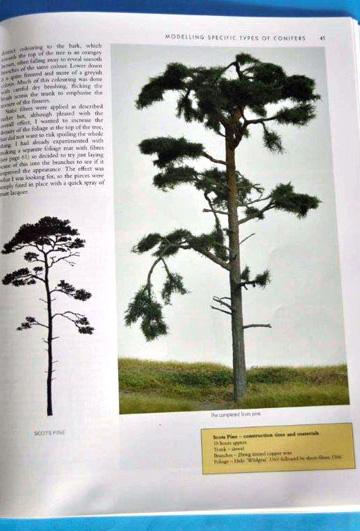 3-BR-Ar-Wild-Swan-Pub-Modelling-Trees-Part-2