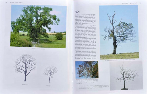 3 BR Ar Wild Swan Pub Modelling Trees Pt1