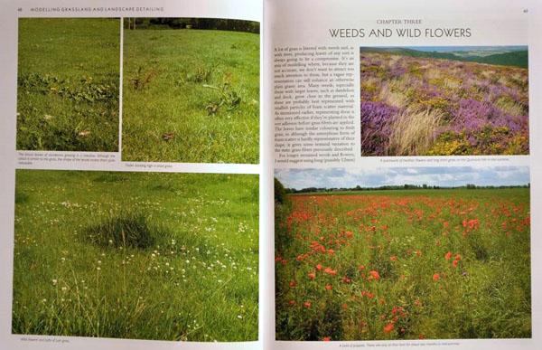 4 BR Ar Wild Swan Pub Modelling Grassland