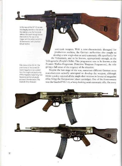 German Auto Rifles 04
