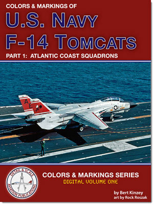 1-BR-Ac-in-Detail-and-Scale-USNavy-F14-Tomcats-Pt1