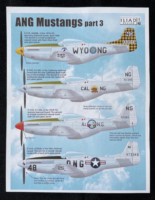 ANG Mustangs Part 3